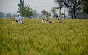 Sukhbir Badal welcomes courageous emphasis on agriculture