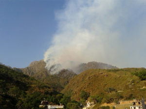 Vaishno Devi yatra suspended after major fire in Trikuta Hills