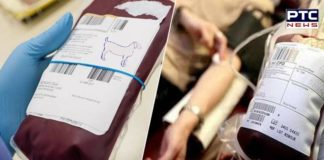 Thalassemia patients to be treated with Goat Blood – starting in Ludhiana