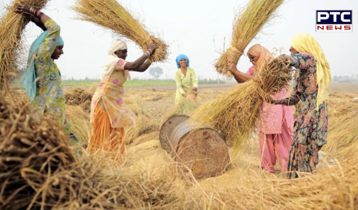 The Punjab Government Farmer 395 crore Subsidy