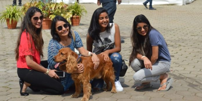Hyderabad to sing bow wow with India's first dog park