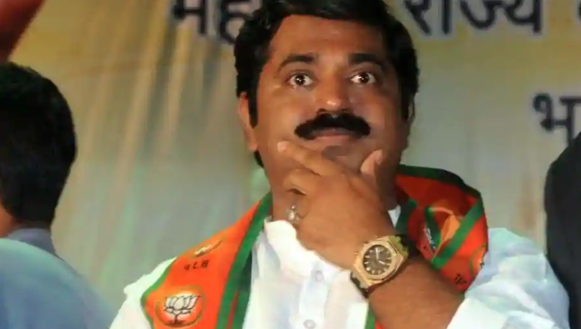 Derogatory! 'Will kidnap girls to help you get married', says BJP leader