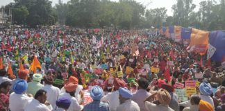 Punjab employees huge protest against Punjab government