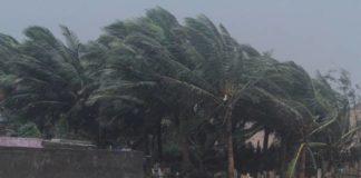 Cyclone 'Titli' leaves 8 dead in AP