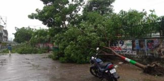 Cyclone Titli: 12 killed, 4 missing as hideout cave crumbles in Odisha
