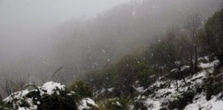 Mughal road closes with fresh snowfall in J&K