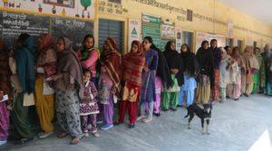 Punjab Panchayat elections 80 percent Higher Done Polling