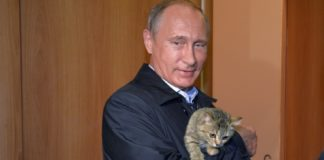 Putin warns if US develops banned missiles, so will Russia