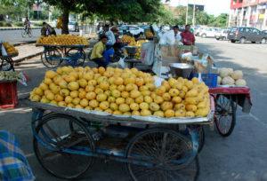 Amritsar Municipal Corporation vendor 1500 per month tax Against Protest