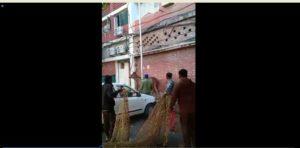 Chandigarh Sector-22 residential area Barasingha