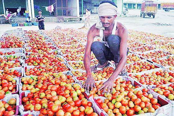 Union Cabinet approves setting up Agri-Market Infrastructure Fund