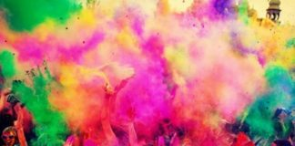 Holi celebrated in Punjab, Haryana with fervour and gaiety