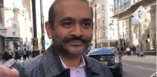 India taking all steps for extradition of Nirav Modi: MEA