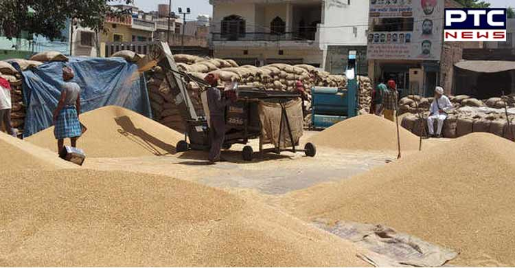 Punjab CM Demands No Value Cut On Wheat MSP From Centre