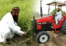Gurmeet Ram Rahim Singh ,parole ,farming