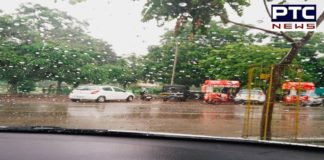 'When it rains it pours', Monsoon in Chandigarh makes beautiful weather