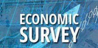 Economic Survery