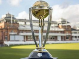 ICC World Cup 2019: ICC announces team of the tournament