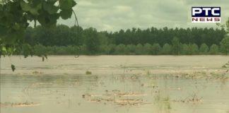 Ludhiana: Precautionary alert in few areas around Sutlej river, amid Heavy Rainfall