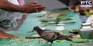 Shradh 2019: Pitru Paksha ceremonies to secure holistic well being