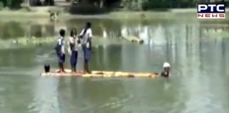 Watch Video: Students cross a river on banana stems to reach their school in Assam