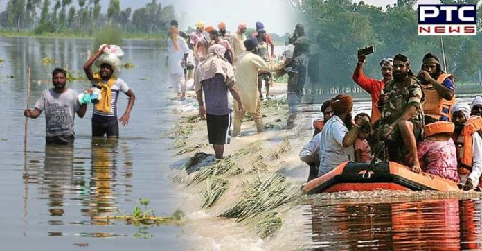 Punjab Floods: Water everywhere but not a drop to drink