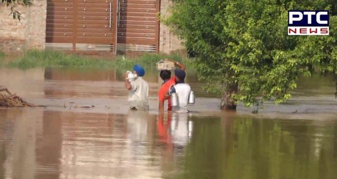 Punjab Floods: Around 20 villages in Lohian Khas flooded in Jalandhar