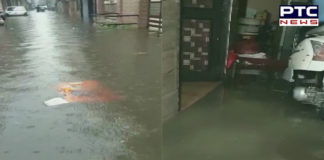 Punjab: Water enters houses and floods streets in Ludhiana amid heavy rainfall, see photos