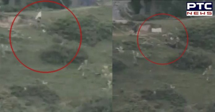 Pakistan, ceasefire violation, white flag, Hajipur sector, Indian Army