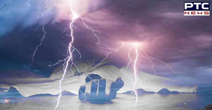 Bihar 17 and UP 8 lightning falling killed , Patna tree collapse 9 injured