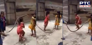 Child Play With Snake