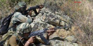 Two pakistani soldier killed in cross border firing