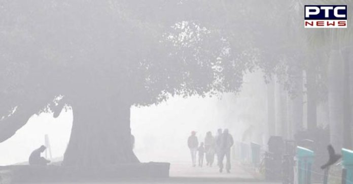 IMD predicts fog intensification over Punjab, Haryana, Chandigarh and Delhi