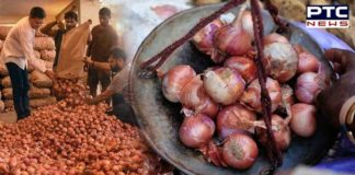 People can heave sigh of relief as onion prices set to drop in Chandigarh