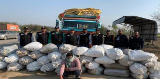 Haryana Police's STF gets big success against drugs
