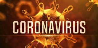 Coronavirus Panchkula , Two suspected cases , Health Department