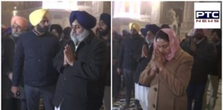 Amritsar: Sukhbir Singh Badal And Harsimrat Kaur Badal offered prayers at Golden Temple (Harmandir Sahib)