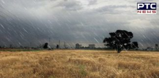 Weather conditions change of the mood And Rain -Hail In Punjab, Farmers Destroyed wheat