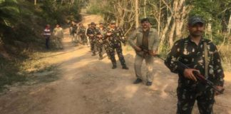 Combing and search operation in the forest area of Jolna panchayat