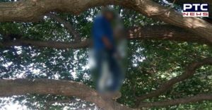 Mohali Sector-70 man suicide by hanging Tree, found dead body
