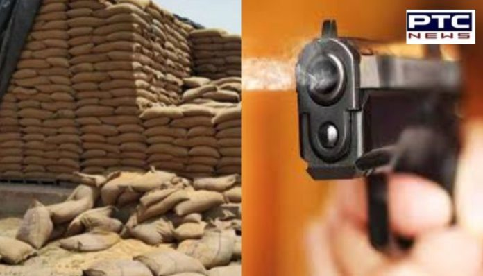 Amritsar Government warehouse wheat 400 sacks Theft, Security personnel injured