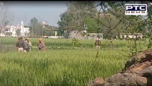 Deaf Dumb Minor Girl Rape After Murder In Village Talwan Near Phillaur, Recovered Deathbody