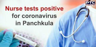 Coronavirus Panchkula Nurse Positive Case , COVID 19 Haryana