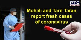 Coronavirus New Cases From Mohali and Tarn Taran | Punjab COVID 19Coronavirus New Cases From Mohali and Tarn Taran | Punjab COVID 19Coronavirus New Cases From Mohali and Tarn Taran | Punjab COVID 19