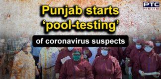 Coronavirus | Punjab Government Starts Pooled procedure for Testing