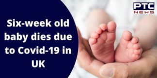 Six week old child Died Due to Coronavirus in England | UK COVID 19