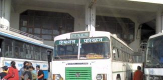 Bus Service to resume in Himachal from 1 June | Himachal News