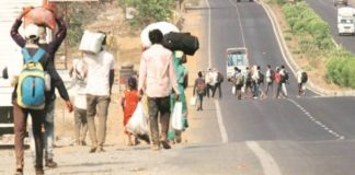 Haryana transported 2,06,763 workers to their home state at govt expense