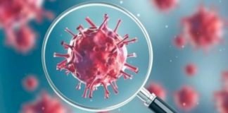 Highest ever spike in Coronavirus Cases in India