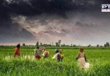 IMD predicts heavy rain in Punjab, Haryana and Chandigarh